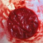 Tarte-framboises-chocolat-Mixer