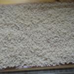 Grattin-de-courgettes-Etaler le riz
