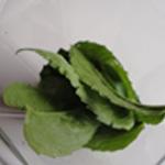 Liqueur-de-menthe-02 Retirer les feuilles