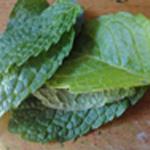 Salade-de-pois-chiche-Feuille de menthe