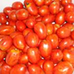 Lasagnes-légumes-Rincer les tomates