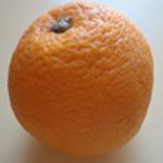 Liqueur-abricot-Laver l'orange