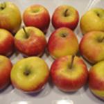 Verrine-de-pommes-Les pommes