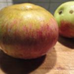 Tarte-aux pommes Eplucher les pommes