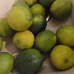 Verrine-citron-vert-Laver les citrons verts