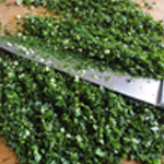 Escargots-recette Hacher persl et ail