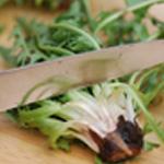 Salade de pissenlits Trancher les tronçons