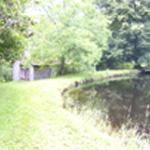 Etienne anniversaire L'étang proche du rendez-vous