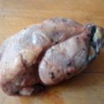 Terrine de faisan Enlever le duvet restant