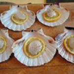 Coquille st Jaques Citron plus noix