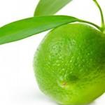 Zeste citron vert confit Terminer
