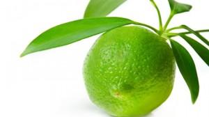 Recette de Zeste de citrons verts confits