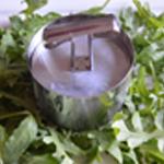 Salade de betterave rouge Presser