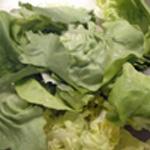 Salade de boeuf Couper la salde verte
