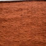 Tiramisu Saupoudrer de chocolat