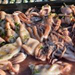Calamars au barbecue Griller sur le barbecue