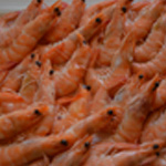 Crevettes apéro Décarcasser les crevettes