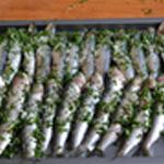 Sardines grillées Farcir avec la persillade