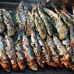 Sardines grillées Griller les sur une plaque