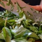 Pesto basilic et parmesanConcasser le basilic