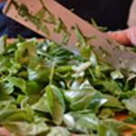 Pesto basilic et parmesanConcasser grossièrement