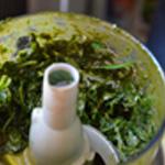 Pesto basilic et parmesan