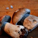 Paupiette de veau aux cèpes Brosser les champignons