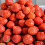 Salade de fraises Les fraises