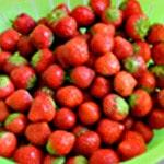 Salade de fraises Rincer rapidement