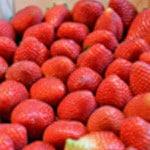 Financiers à la fraise Les fraises