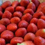 Mousse à la fraise Rincer les fraises