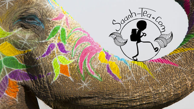 Eléphant avec logo dans la trompe