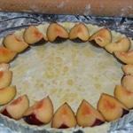 Tate aux prunes et raisin commencer par les prunes