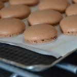 Macarons au chocolat Coques croutées