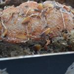 Magret de canard au foie Zoomras