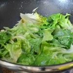 Légumes de printemps La laitue