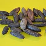 Mousse au chocolat noir et fèves tonkas Les fèves de Tonkas