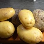 Gratin de pomme de terre et betterave rouge Eplucher les pommes de terre