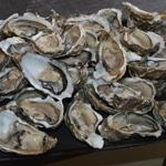 Les huîtres chaudes au Bergerac blanc Ouvrir les huitres