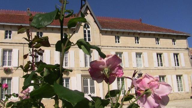 Domaine Cognac Raymond Bossis