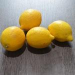 Rillettes d'anchois Les citrons bio