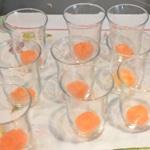 Verrine de maquereaux au vin blanc Commencer par une rondelle de carotte