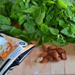 Pesto d'orties Les ingrédients