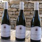 Thierry Mortet Gevrey Chambertin 2013 3 bouteilles